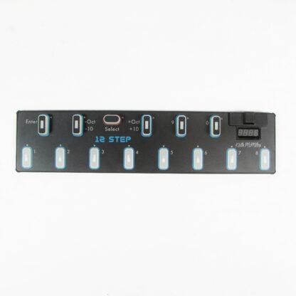 schecter c-1 custom electric