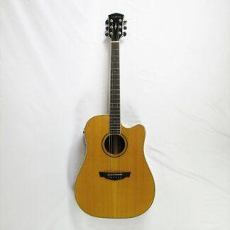 Vintage 1970s Acoustic Model 116