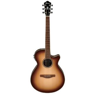 new ibanez aeg electric acoustic guitar