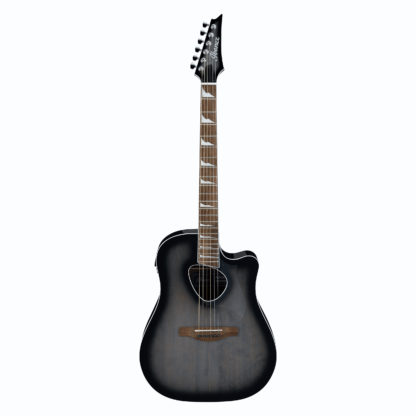 new ibanez alt30 electric acoustic guitar